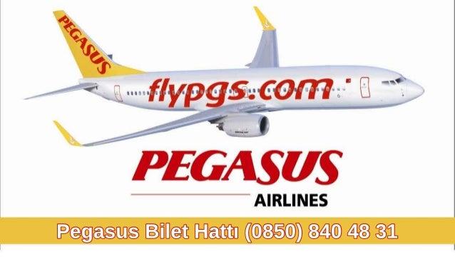 PegasusBiletHattı(0850)8404831