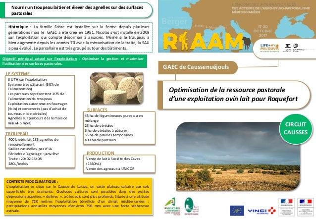 GAEC de Caussenuéjouls Optimisation de la ressource pastorale d'une exploitation ovin lait pour Roquefort CIRCUIT CAUSSES ...