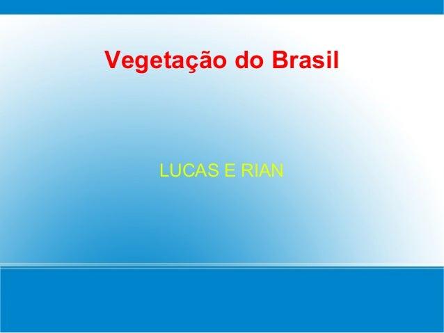 Vegetação do BrasilLUCAS E RIAN