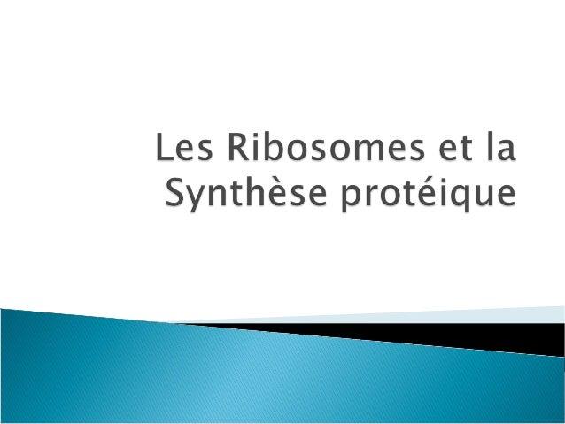 ribosome    Structure atomique d'une grande sous-unité d'un ribosome. ◦ Les protéines sont colorées en bleu. ◦ Les ARN, e...