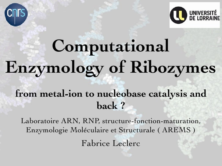 ComputationalEnzymology of Ribozymes from metal-ion to nucleobase catalysis and                   back ?  Laboratoire ARN,...