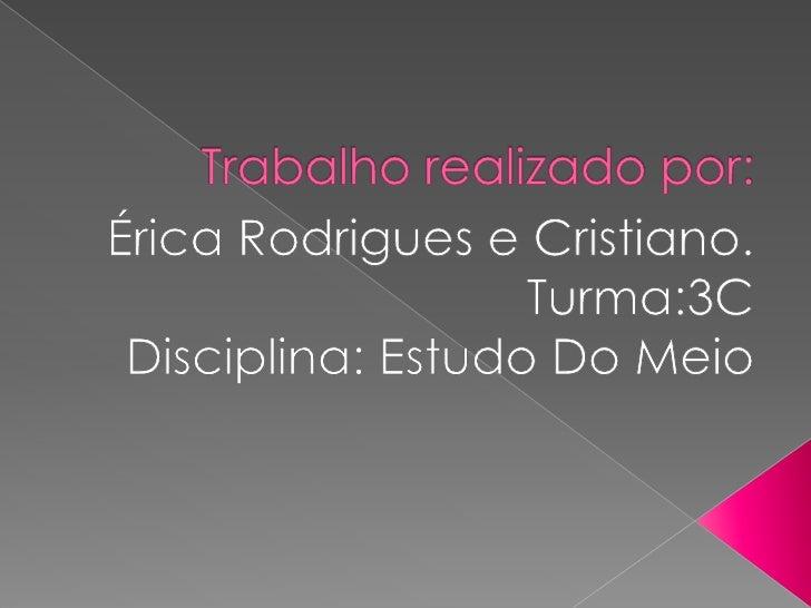 Trabalho realizado por:<br />Érica Rodrigues e Cristiano. <br />Turma:3C  <br />Disciplina: Estudo Do Meio   <br />