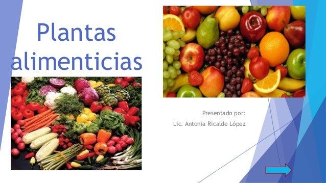 Ricalde lopez antonia plantas alimenticias for Plantas ornamentales y medicinales