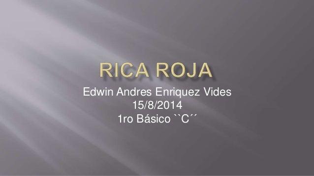 Edwin Andres Enriquez Vides 15/8/2014 1ro Básico ``C´´