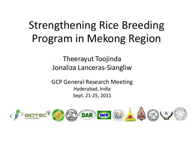 Strengthening Rice BreedingProgram in Mekong RegionTheerayut ToojindaJonaliza Lanceras-SiangliwGCP General Research Meetin...