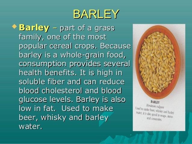 BARLEYBARLEY  BarleyBarley –– part of a grasspart of a grass family, one of the mostfamily, one of the most popular cerea...