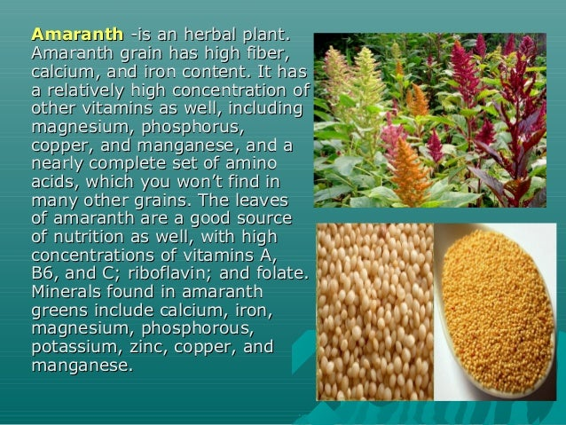 AmaranthAmaranth -is an herbal plant.-is an herbal plant. Amaranth grain has high fiber,Amaranth grain has high fiber, cal...