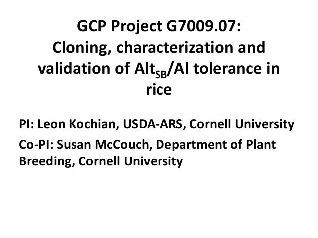 GCP Project G7009.07: Cloning, characterization and validation of AltSB/Al tolerance in rice PI: Leon Kochian, USDA-ARS, C...
