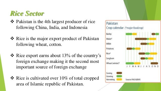 rice industry of pakistan Pakistan's automotive industry is the one of the fastest growing industries of the country, accounting for 4% of pakistan's gdp and employing a workforce of over 1,800,000 people currently there are 3200 automotive manufacturing plants in the country, with an investment of ₨ 92 billion (us$870 million) producing 18 million motorcycles and.