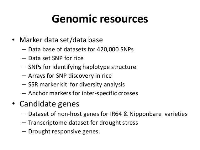 Genomic resources • Marker data set/data base – Data base of datasets for 420,000 SNPs – Data set SNP for rice – SNPs for ...