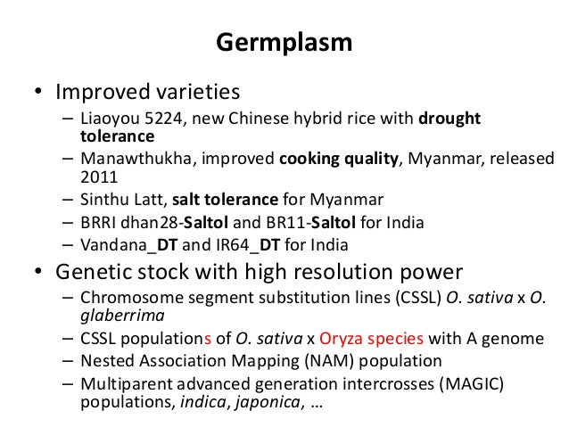 Germplasm • Improved varieties – Liaoyou 5224, new Chinese hybrid rice with drought tolerance – Manawthukha, improved cook...