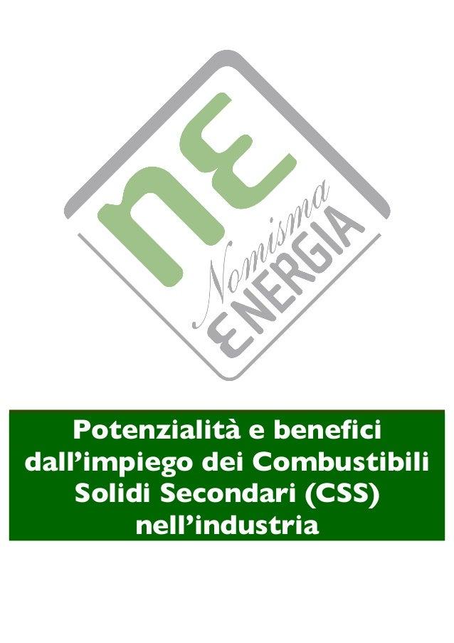 Potenzialità e benefici dall'impiego dei Combustibili Solidi Secondari (CSS) nell'industria
