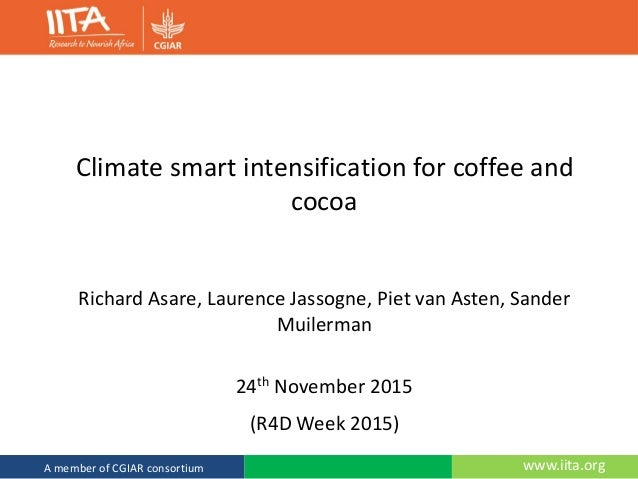 www.iita.orgA member of CGIAR consortium Climate smart intensification for coffee and cocoa Richard Asare, Laurence Jassog...
