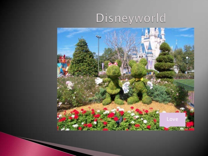 Disneyworld<br />Love<br />