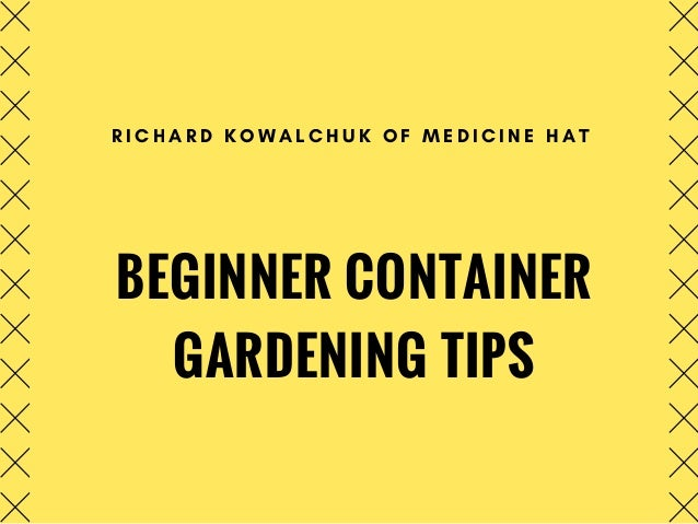 BEGINNER CONTAINER GARDENING TIPS R I C H A R D K O W A L C H U K O F M E D I C I N E H A T