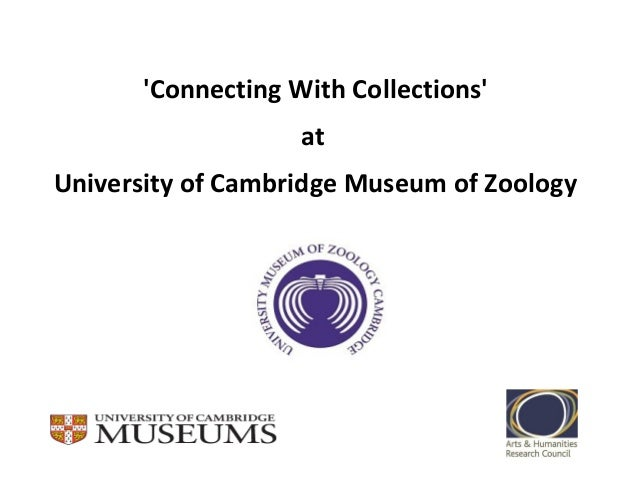 'Connecting With Collections' at University of Cambridge Museum of Zoology