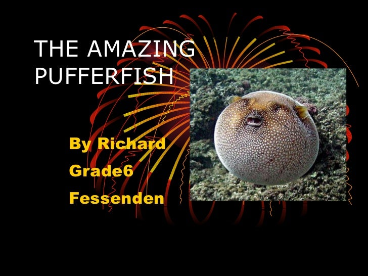 THE AMAZING PUFFERFISH By Richard Grade6 Fessenden