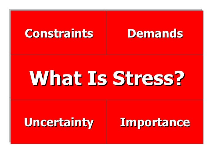 Importance Uncertainty What Is Stress? Demands Constraints