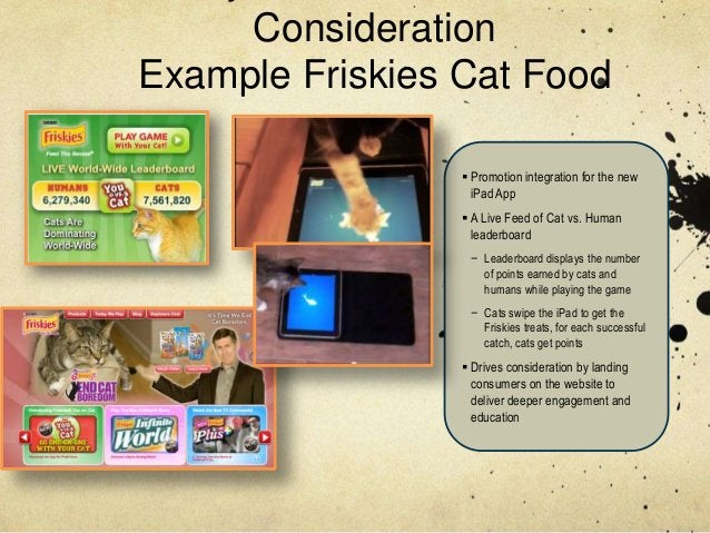 ConsiderationExample Friskies Cat Food                  Promotion integration for the new                   iPad App     ...