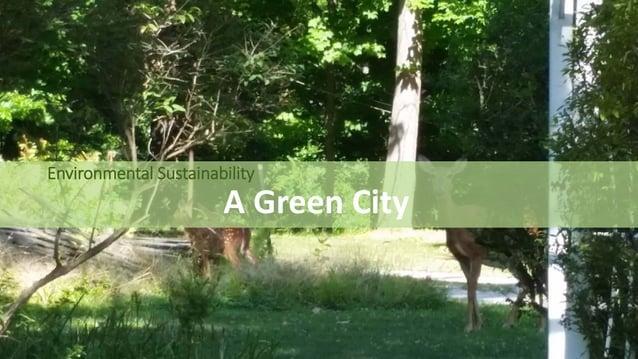 Environmental Sustainability A Green City