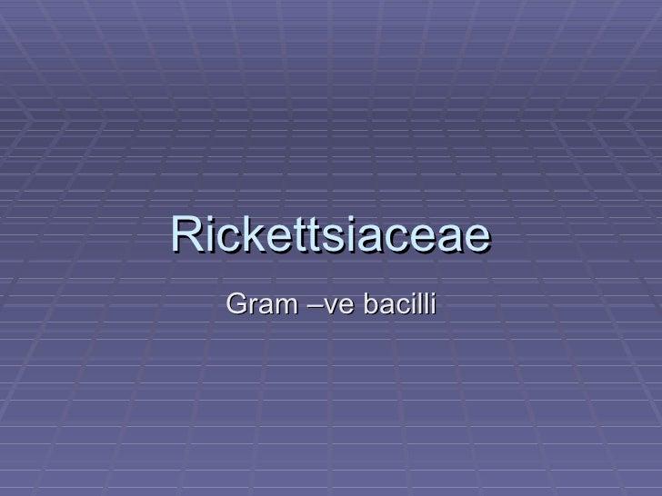 Rickettsiaceae Gram –ve bacilli
