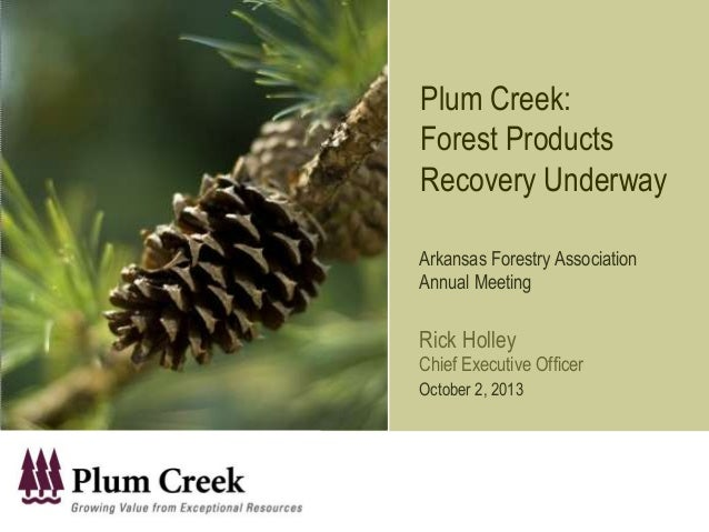 Plum Creek: Forest Products Recovery Underway Arkansas Forestry Association Annual Meeting Rick Holley Chief Executive Off...