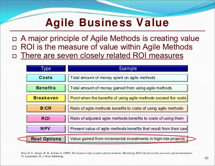 lean agile project management for large programs projects