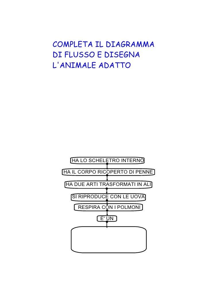 COMPLETA IL DIAGRAMMADI FLUSSO E DISEGNALANIMALE ADATTO    HALOSCHELETROINTERNO  HAILCORPORICOPERTODIPENNE  HADUE...
