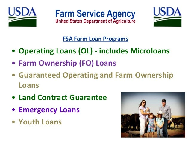 to the Farm Service Agency Microloan Program