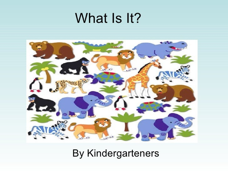 What Is It? By Kindergarteners