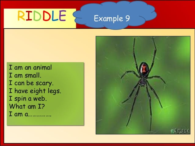 RIDDLE WHAT AM I ? Example 9 I am an animal I am small. I can be scary. I have eight legs. I spin a web. What am I? I am a...