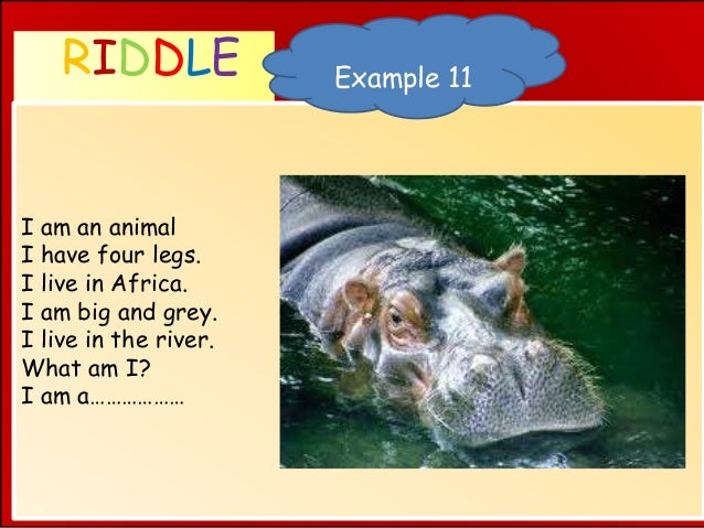 RIDDLE WHAT AM I ? I am an animal I have four legs. I live in Africa. I am big and grey. I live in the river. What am I? I...