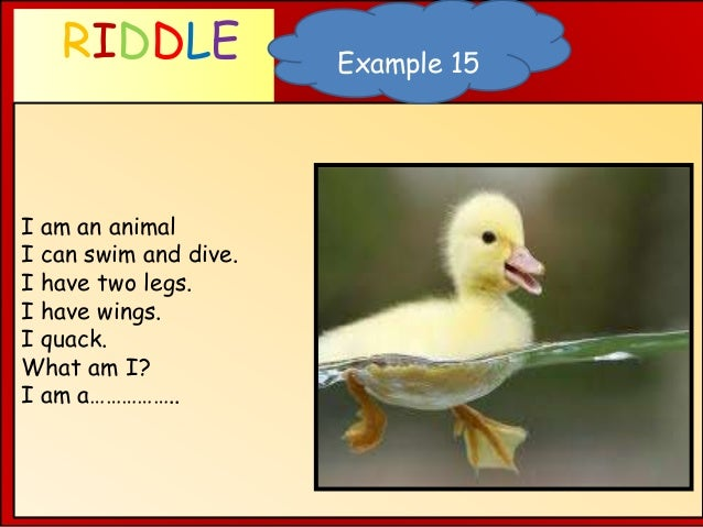 RIDDLE WHAT AM I ? I am an animal I can swim and dive. I have two legs. I have wings. I quack. What am I? I am a…………….. Ex...