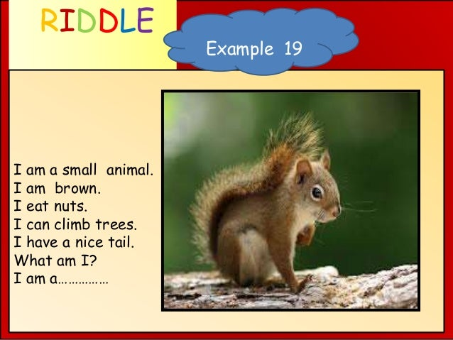 RIDDLE WHAT AM I ? I am a small animal. I am brown. I eat nuts. I can climb trees. I have a nice tail. What am I? I am a……...