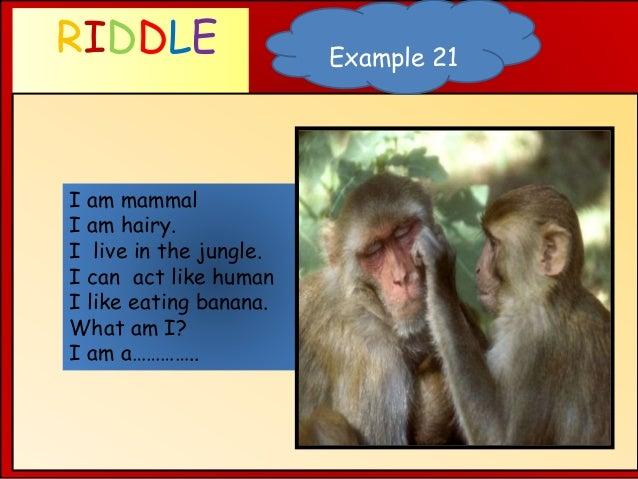 RIDDLE WHAT AM I ? Example 21 I am mammal I am hairy. I live in the jungle. I can act like human I like eating banana. Wha...