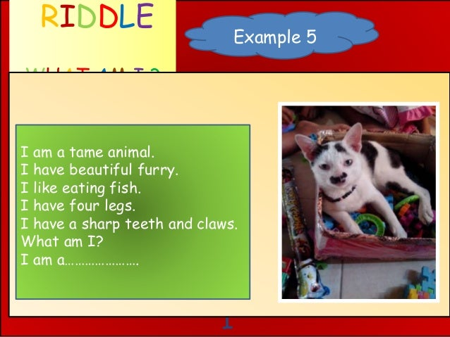 I RIDDLE WHAT AM I ? Example 5 I am a tame animal. I have beautiful furry. I like eating fish. I have four legs. I have a ...