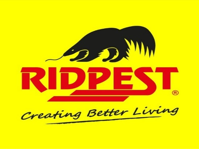 Vision  To be the Ultimate Pest  Management Company  internationally offering  a  comprehensive set of  highly effective s...