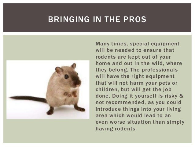 how to get rid of rodents in your house