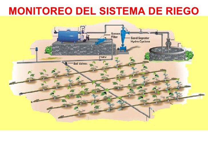 Beneficios de la utilizaci n del riego tecnificado en la - Sistema de riego por goteo automatizado ...