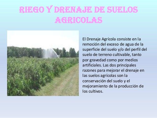 RIEGO Y DRENAJE DE SUELOS AGRICOLAS El Drenaje Agrícola consiste en la remoción del exceso de agua de la superficie del su...
