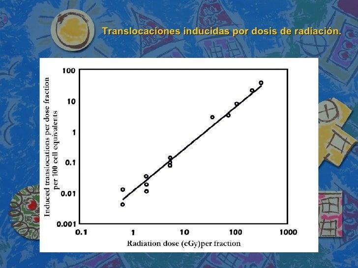 Translocaciones inducidas por dosis de radiación.