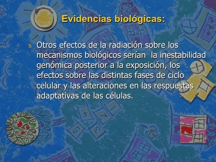 Evidencias biológicas: <ul><li>Otros efectos de la radiación sobre los mecanismos biológicos serían  la inestabilidad genó...
