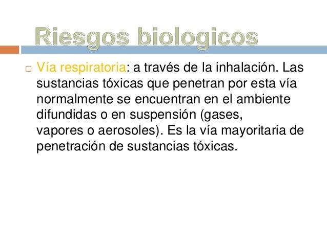  Vía respiratoria: a través de la inhalación. Las  sustancias tóxicas que penetran por esta vía  normalmente se encuentra...