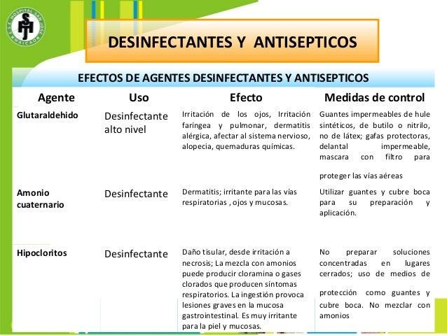ejemplos de vias metabolicas y anabolicas
