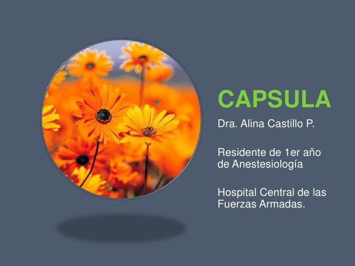CAPSULA<br />Dra. Alina Castillo P.<br />Residente de 1er año de Anestesiología<br />Hospital Central de las Fuerzas Armad...