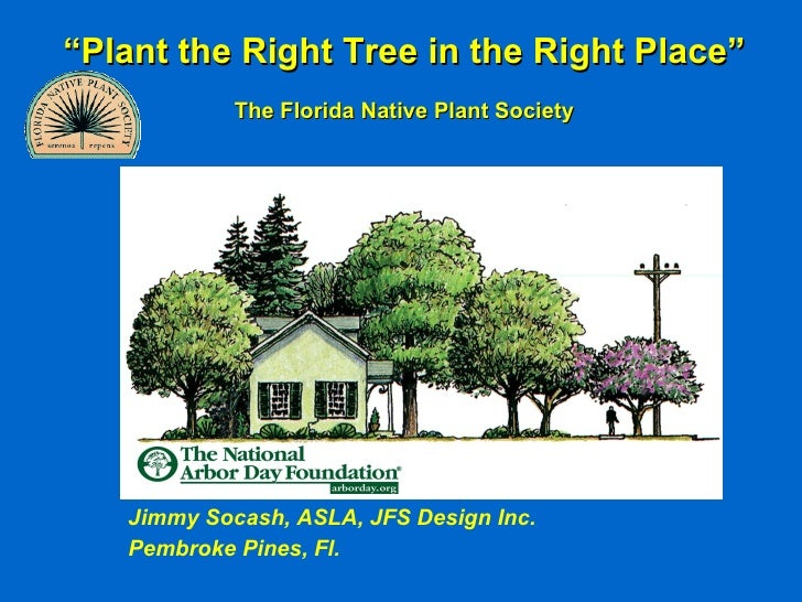 """Plant the Right Tree in the Right Place""             The Florida Native Plant Society        Jimmy Socash, ASLA, JFS Desi..."