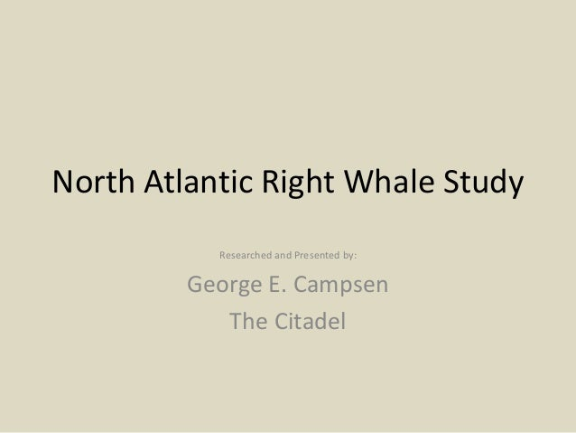 North Atlantic Right Whale Study Researched and Presented by: George E. Campsen The Citadel
