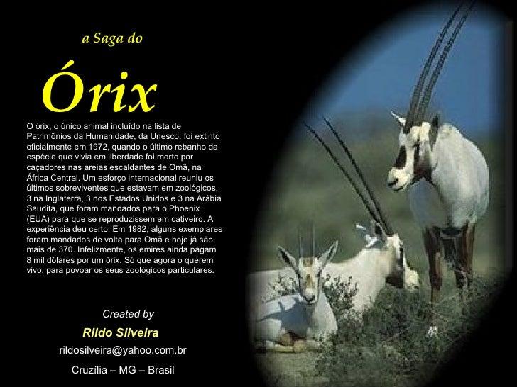 a Saga do  Órix O órix, o único animal incluído na lista de Patrimônios da Humanidade, da Unesco, foi extinto oficialmente...