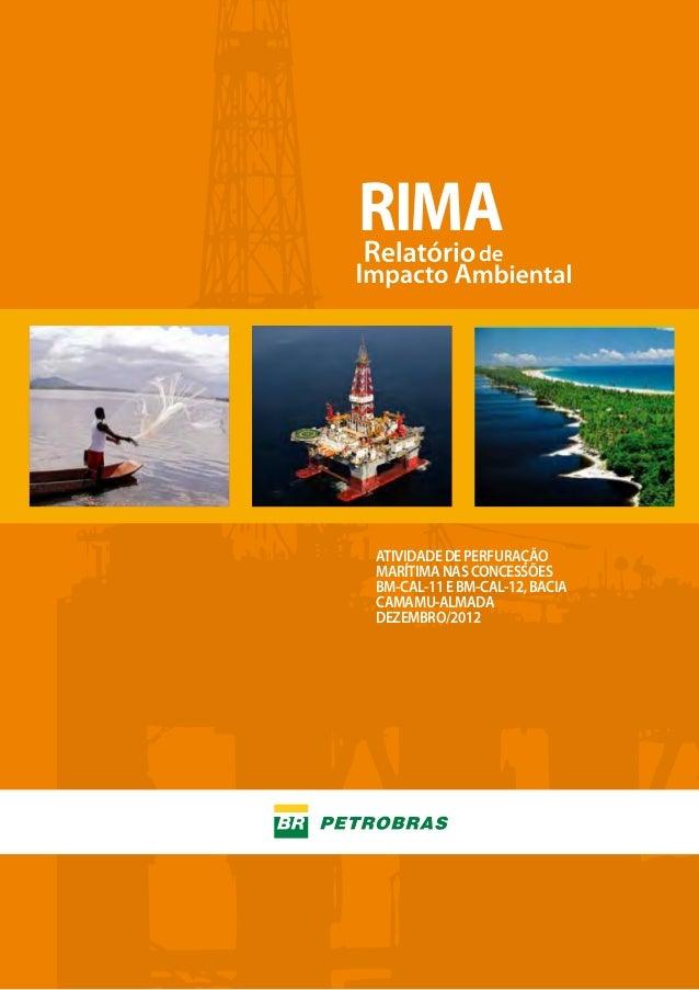 RIMA  ATIVIDADE DE PERFURAÇÃO MARÍTIMA NAS CONCESSÕES BM-CAL-11 E BM-CAL-12, BACIA CAMAMU-ALMADA DEZEMBRO/2012