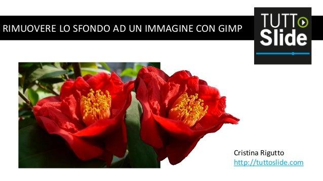 RIMUOVERE LO SFONDO AD UN IMMAGINE CON GIMP  Cristina Rigutto http://tuttoslide.com